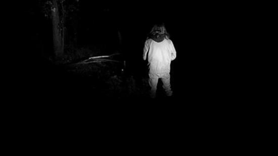 Musique de Films d'Horreur en Forêt la Nuit